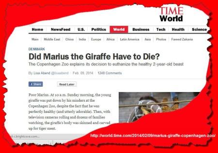 Time World on Marius