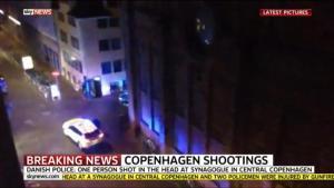 article-copenhagen3-0214 -synagogen